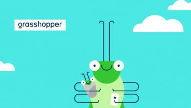 Photo of Grasshopper